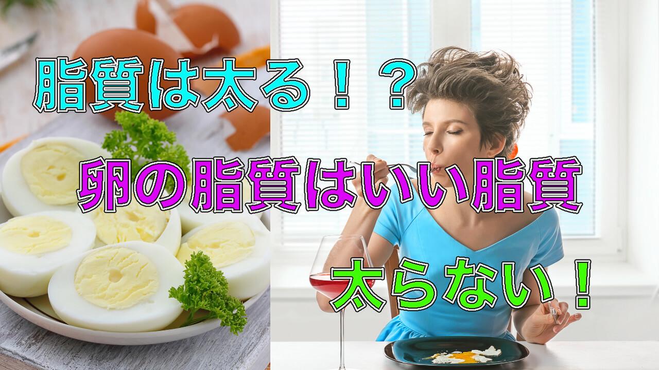 卵は太る?太らない?