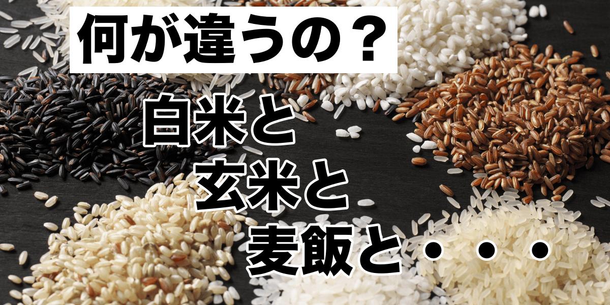 【何が違うの?】白米と玄米と麦飯と・・・